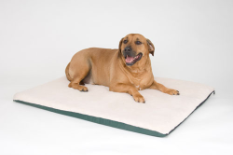 Ortho Thermo-Bed ™ Indoor Heated Dog Bed