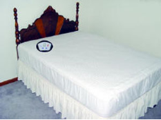 Electro-Warmth Heated Mattress Pad -                         Bed Warmers