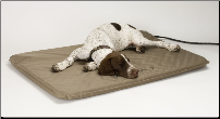 Outdoor Heated Dog Beds / Products