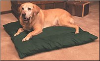 Indoor Heated Dog Beds / Products