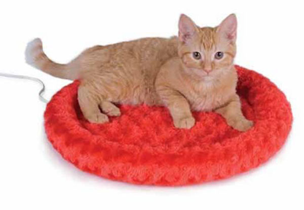 thermokitty fashion splash heated cat bed